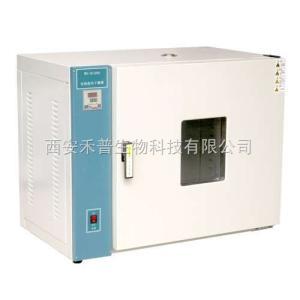 WH43電熱恒溫干燥箱