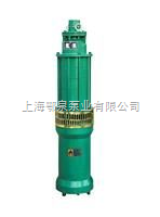 QS型清水潛水電泵