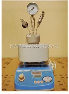 CGFL-200ml微型磁力高压反应釜