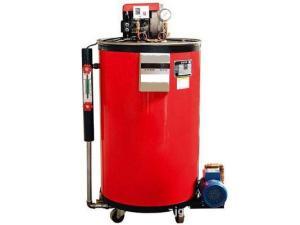 LHS型張家港方快 35kg 燃氣燃油蒸汽發生器