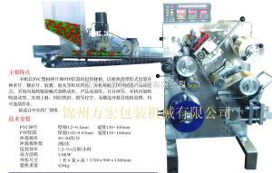 DPT130A型廣州小型泡罩膠囊灌裝機生產商