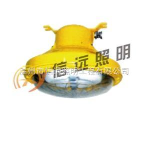 BFC8182海洋王防爆無極熒光燈  BFC8182