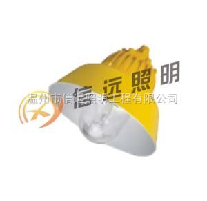 BPC8700海洋王防爆平台灯 BPC8700