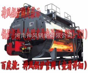 WNS 燃气热水锅炉燃气锅炉 医用燃气锅炉系列