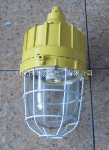 BAD81BAD81一体式防爆灯