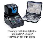 伯樂熒光定量PCR儀伯樂chromo4熒光定量PCR儀