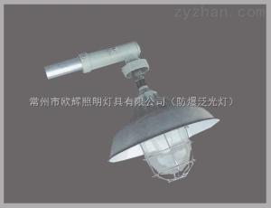 BAM52供应BAM52防爆马路灯BAM52防爆马路灯价格华荣防爆马路灯丨BAP52防爆平台灯厂家