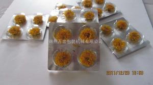DPT190型供應自動菊花茶泡罩包裝機