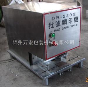 DR-220型專業生產紙盒批號印字機