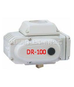 DR-5A DR精小型电动执行机构 DR-10A DR-20A DR-50A DR-100A DR-DR-5A DR精小型电动执行机构 DR-10A DR-20A DR-50A DR-100A DR-