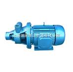 1W型單級漩渦泵
