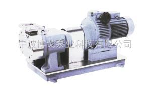 BG12V型進口轉子泵