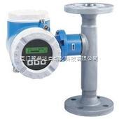 E+H FDU81-RG2AE+H温度传感器E+H FDU81-RG2A