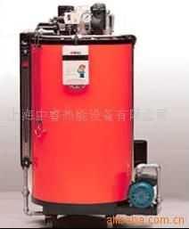 30Kg-500Kg燃氣鍋爐