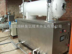 GLW-1000印染污水專用臭氧系統