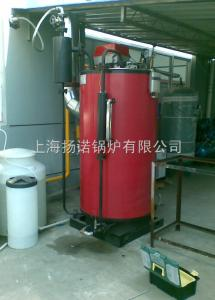 洗滌熨燙消毒煮豆漿蒸飯蒸包子用200kg蒸汽燃油鍋爐