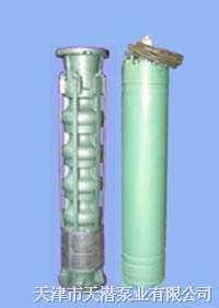 150QJ66系列里茨泵