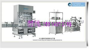 食品级润滑油灌装机 - 食品级润滑脂自动定量装瓶机 分装