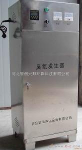 ZXB-20濟南臭氧發生器|濟南臭氧消毒設備