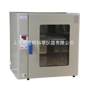 GR-246超溫報警熱空氣消毒箱 GR-246博迅干烤滅菌器