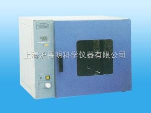 DHG-9013A电热恒温干燥箱 DHG-9013A台式鼓风干燥箱