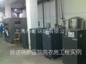 100kg水洗機用2臺36kw電蒸汽發生器