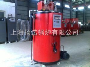 供應食堂廚房專用小型50kg燃氣鍋爐