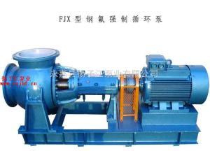 化工泵:FJX系列強制循環軸流泵 蒸發循環泵