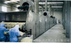果蔬脱水干燥机/网带式干燥机