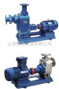 125ZW120-20自吸式无堵塞排污,自吸排污泵