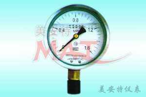 YTN、YTN-B系列耐震壓力表