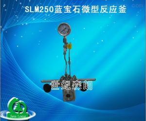 SLM250蓝宝石SLM250蓝宝石微型反应釜