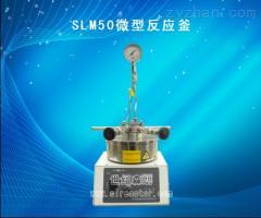 SLM50微型高壓反應釜SLM50微型高壓反應釜