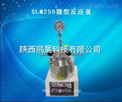 SLM250微型高压反应釜SLM250微型高压反应釜