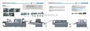 DPH260H-XWZ200固體制劑生產聯動線