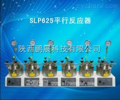 SLP625SLP625平行高壓反應釜