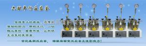 SLP6500SLP6500平行高压反应釜