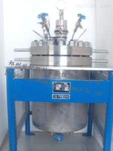 高压反应釜20L-3000L